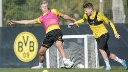 BVB-Kapitän Marco Reus (re.) setzt auf die Fähigkeiten von Erling Haaland