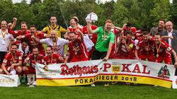 Der SV Linx trifft im Pokal auf den 1. FC Nürnberg (Bild: SV Linx)