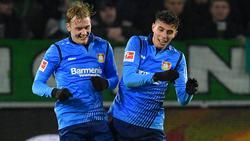 Julian Brandt und Kai Havertz stehen bei zahlreichen Klubs auf dem Zettel