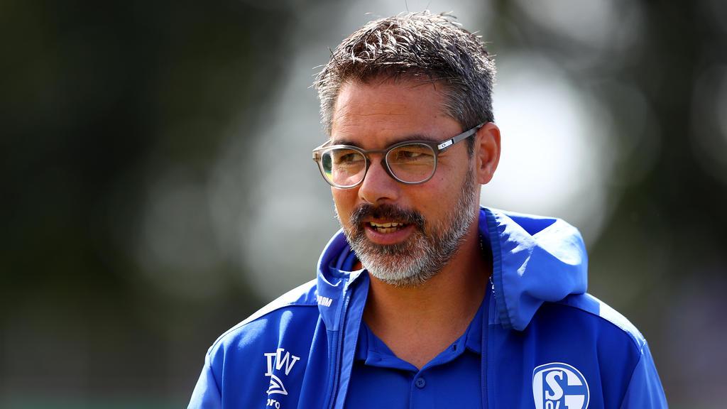 David Wagner steht bei Schalke 04 an der Seitenlinie