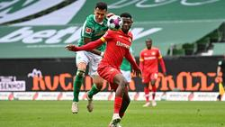 Punkteteilung zwischen Werder und Bayer