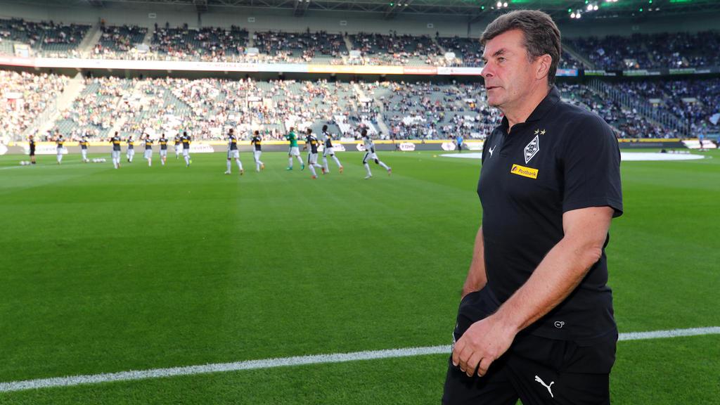 Dieter Hecking und seine Borussia sind eine der Überraschungen der Saison