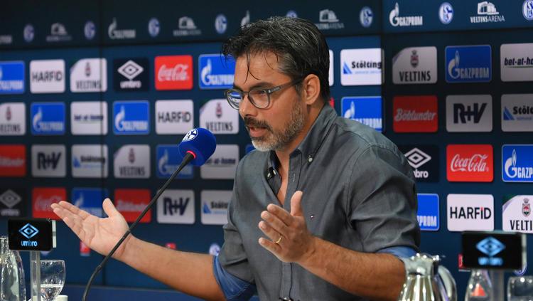 David Wagner erlebte als Trainer des FC Schalke 04 keine gute erste Saison