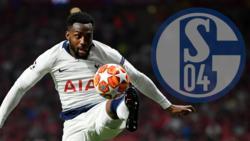 Danny Rose wird mit dem FC Schalke 04 in Verbindung gebracht