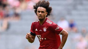 Joshua Zirkzee könnte den FC Bayern wieder in die Serie A verlassen