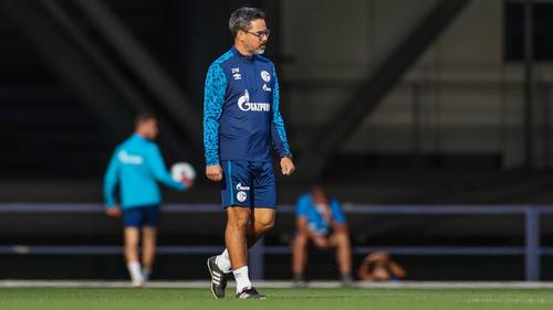 David Wagner steht beim FC Schalke mit dem Rücken zur Wand