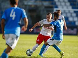 Salzburgs U19 ließ Napoli in der Youth League keine Chance