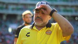 Kniegeplagt: Diego Maradona