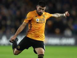 Die Wolves fordern den Rekordmeister