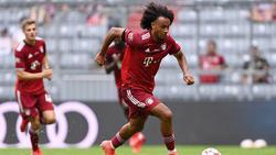 """Joshua Zirkzee wurde von """"Fans"""" des FC Bayern attackiert"""