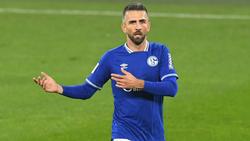 Vedad Ibisevic spielte zuletzt beim FC Schalke 04