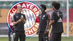 Jugend forscht beim FC Bayern: Wer kommt groß raus?