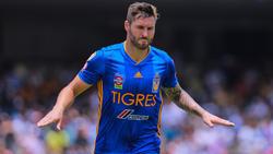 Gignac celebra su gol número 105 con los Tigres.