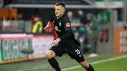 Eigengewächs des SV Werder: Maximilian Eggestein
