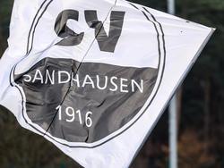 Sandhausen verpflichtet Dominik Stolz