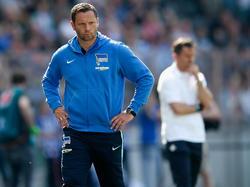 Hertha-Trainer Pal Dardai mistet aus.