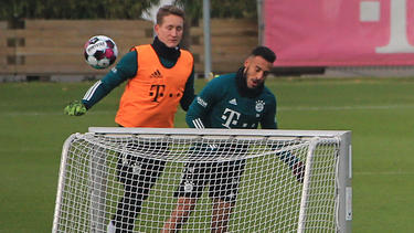 Verlassen Corentin Tolisso (r.) und Ron-Thorben Hoffmann den FC Bayern?