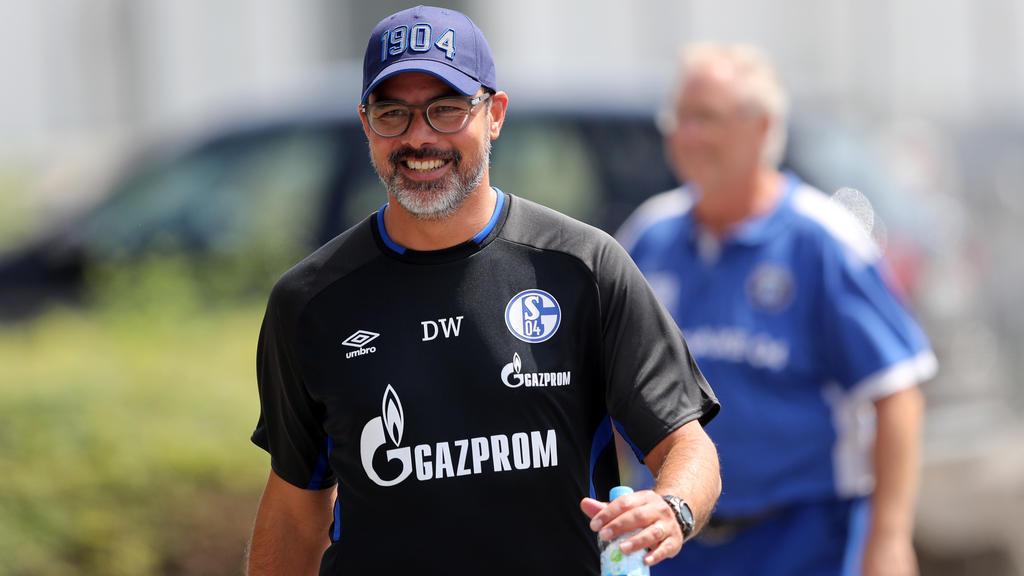David Wagner will den FC Schalke 04 zurück nach oben führen