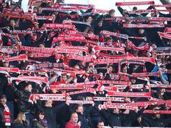 Fans von Rot-Weiß Erfurt 2015/2016