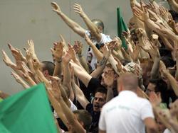 Het thuispubliek van Ferencvaros steunt de ploeg. (08-05-12)