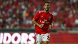 Pizzi (Benfica)