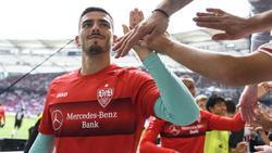 Wird im Pokalspiel gegen Bayer Leverkusen im Tor des VfB stehen: Stuttgarts Keeper Fabian Bredlow