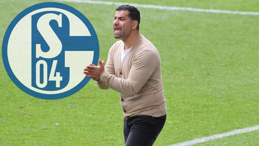 Dimitrios Grammozis plant mit dem FC Schalke 04 den Wiederaufstieg