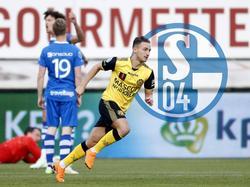Donis Avdijaj könnte im Sommer erneut zum FC Schalke 04 zurückkehren.