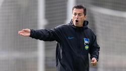 Musste auf Niklas Stark verzichten: Hertha-Coach Ante Covic