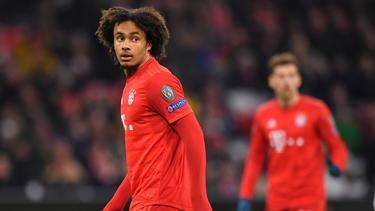 Joshua Zirkzees Vertrag beim FC Bayern läuft noch bis 2023