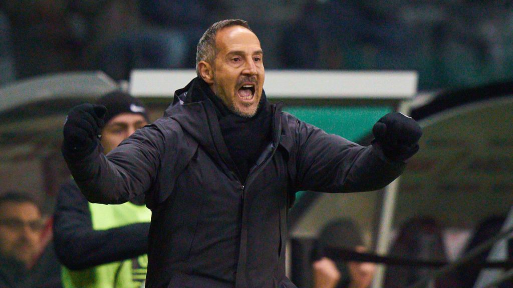 Soll ein Thema beim BVB sein: Adi Hütter von Eintracht Frankfurt