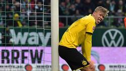 Der BVB hat mit Erling Haaland einen guten Fang gemacht