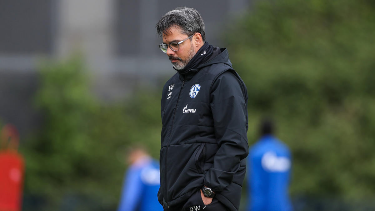 David Wagner wartet mit dem FC Schalke 04 seit Monaten auf einen Sieg