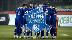 Der FC Schalke 04 sucht noch dem passenden Mix aus Talent und Erfahrung