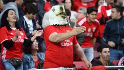 Benfica-Fans hoffen gegen Eintracht Frankfurt auf den Einzug ins Halbfinale