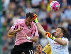 Gilardino trifft gegen Frosinone