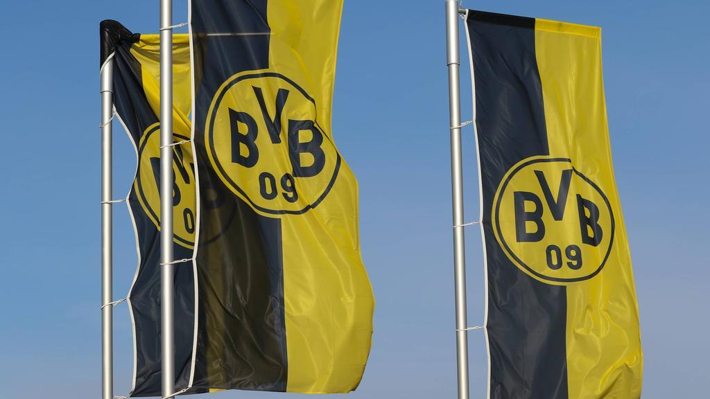 Ismael Gharbi steht offenbar beim BVB auf dem Zettel