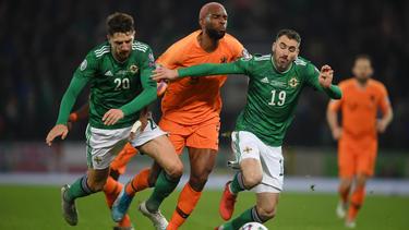 Die Niederländer kamen gegen Nordirland nicht über ein 0:0 hinaus
