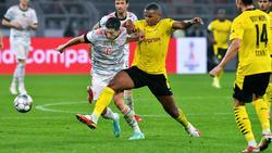 BVB-Profi Manuel Akanji wäre auch einer für den FC Bayern, glaubt Markus Babbel