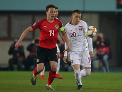 Baumgartler gegen Polen
