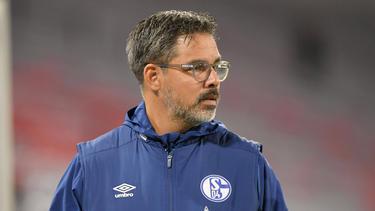 David Wagner droht das Aus beim FC Schalke 04