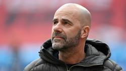 Peter Bosz ist kein Bayer-Trainer mehr