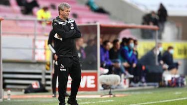 Friedhelm Funkel soll den 1. FC Köln noch vor dem Abstieg retten