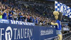 Der FC Schalke 04 hat am Samstag ein brisantes Heimspiel