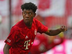David Alaba steht wieder im Mannschaftstraining des FC Bayern