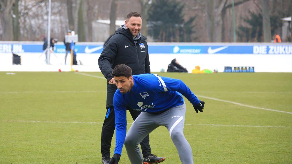 Pál Dárdai setzt bei Hertha BSC auf Sami Khedira