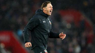 Ralph Hasenhüttl brachte mit seinen Saint den FC Arsenal zu Fall