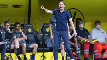 Bedienen sich Eintracht Frankfurt und Oliver Glasner beim BVB?