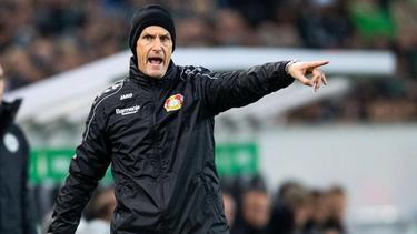 Heiko Herrlich hält sich mit Leverkusen weiter schadlos