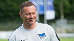 Trainer Pál Dárdai sieht Hertha als Aus- und Weiterbildungsverein